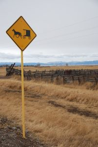 Buggy sign in Manassa, CO