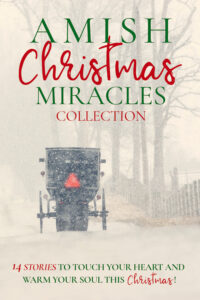"""The Amish Christmas Miracles collection featuring """"The Heart's Return"""" by Adina Senft"""